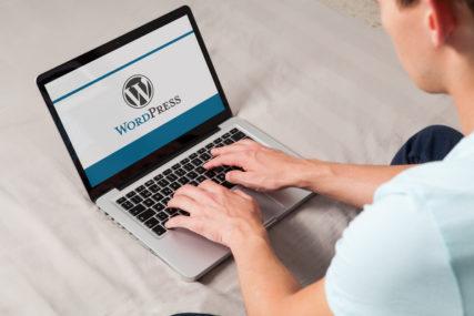 wordpress website developers